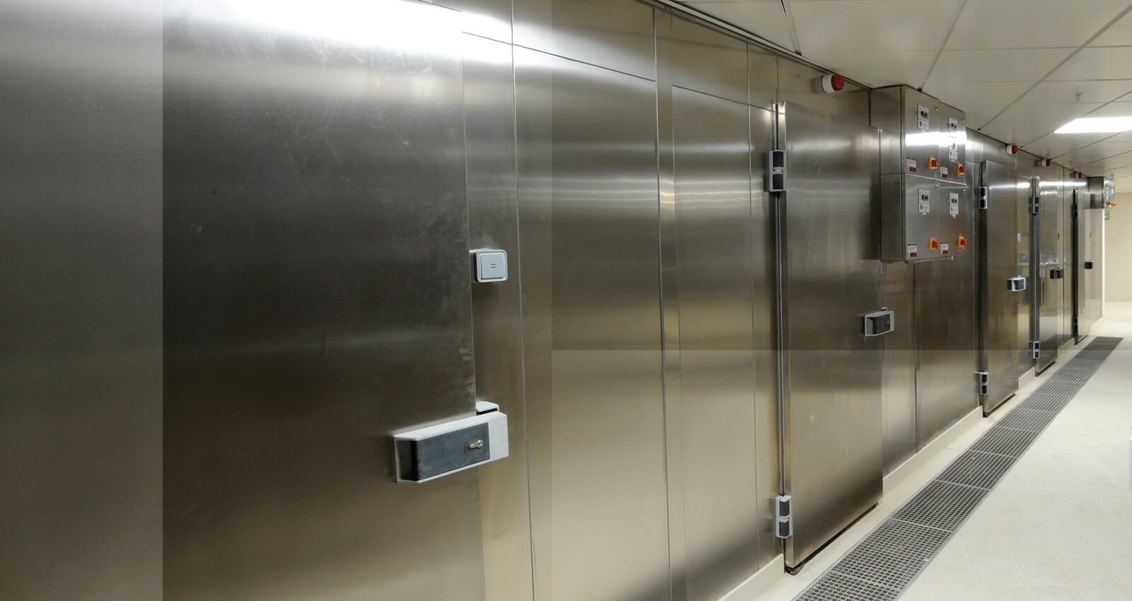 Cold Rooms Walk In Fridges Amp Freezers Green Cooling